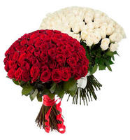 Акция! 51 роза - 4490 руб., 101 роза 7990 руб.