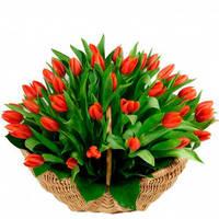 """Корзина из красных тюльпанов """"Восторг"""""""