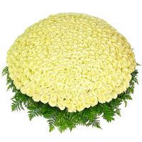 """Корзина из 501 белой розы """"Мой Ангел"""""""