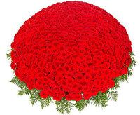 """Корзина из 501 красной розы """"Люблю"""""""