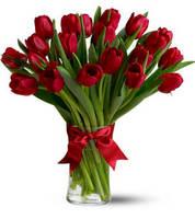 Тюльпаны (в ассортименте)