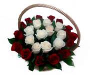 Корзина алые и белые розы