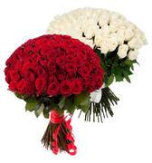 Акция! 51 роза - 4490 руб., 101 роза - 7990 руб.