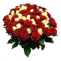 Букеты из разноцветных роз (Микс)